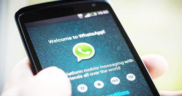 informasi pengguna whatsapp