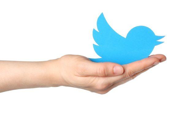 cara mengintip akun dari twitter